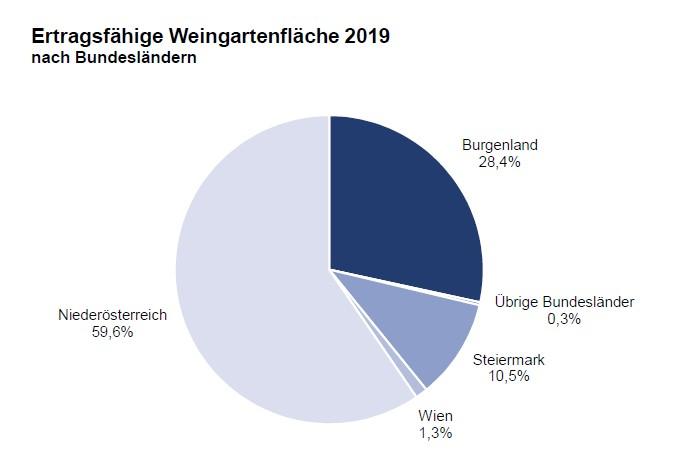 Weingartenfläche Österreich